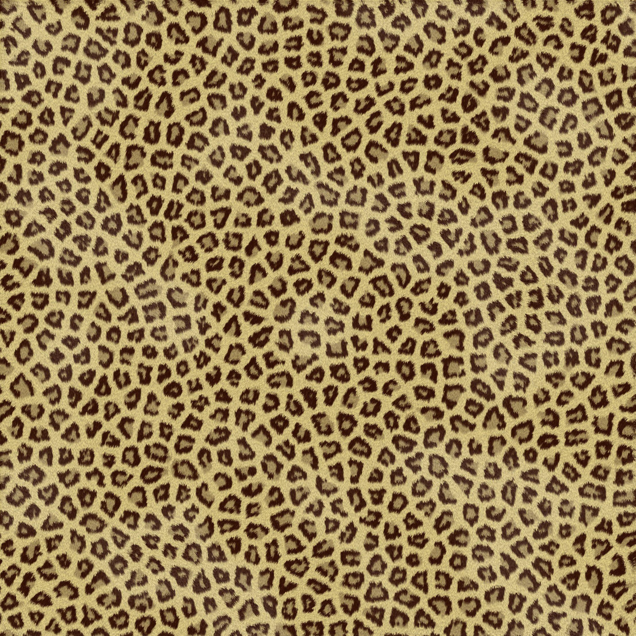 Cheetah Print Hd Wallpaper Mcis Jpg 2214 2214 Cheetah Print Wallpaper Animal Print Wallpaper Print Wallpaper