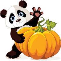 Panda Bear and Pumpkin