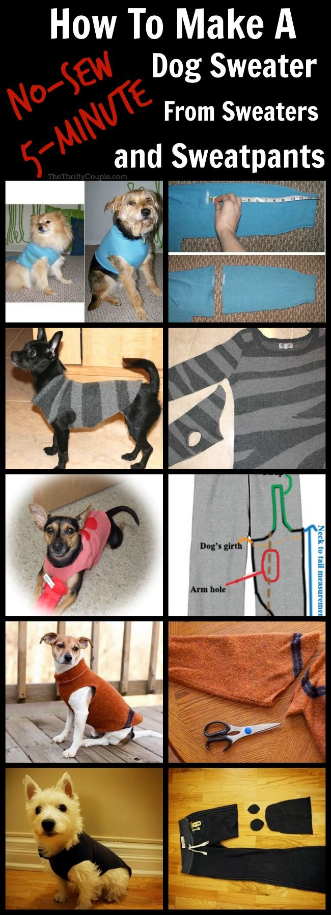 Learning to sew clothes for small dogs yourself