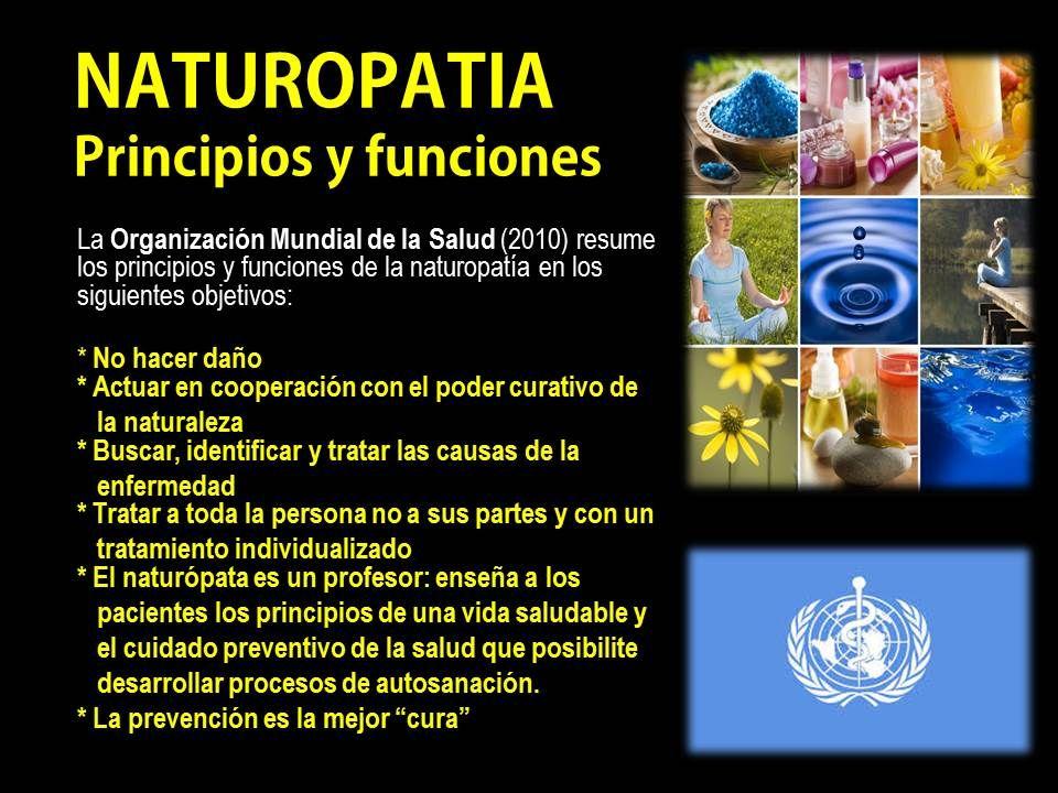 Naturopatía: principios y funciones. | Naturopathy, Playbill