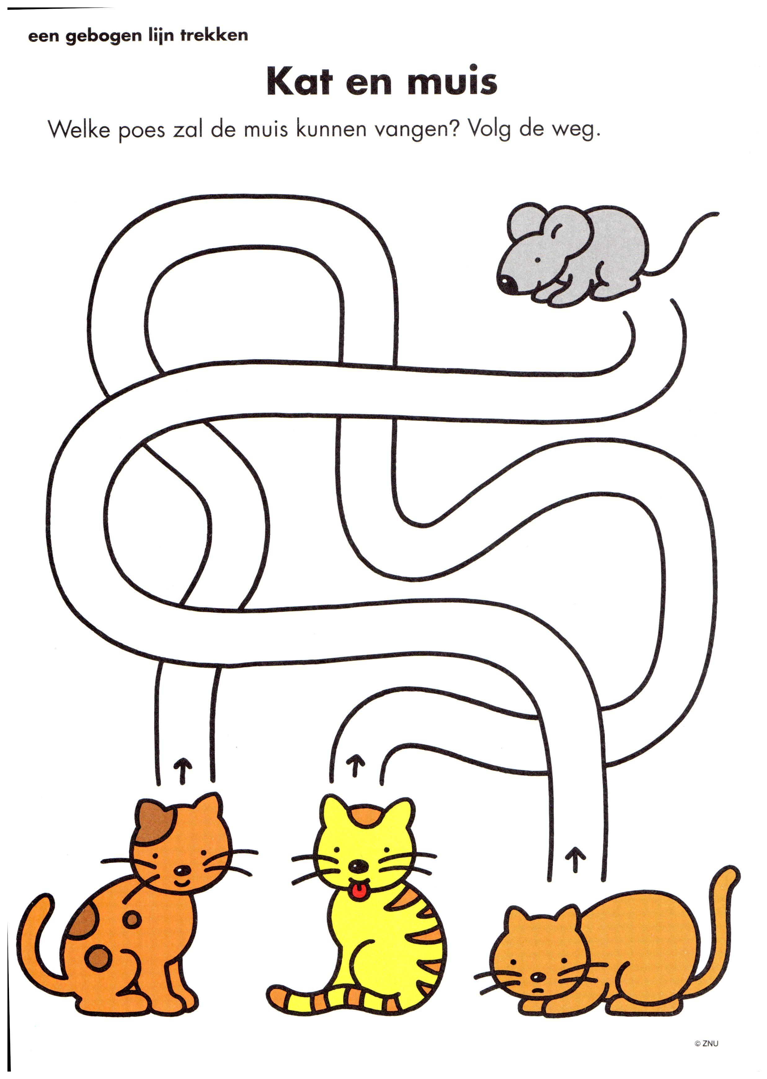 Opdracht Kat En Muis Huisdieren Doolhof Kleuterklas Huisdieren Katten Dieren