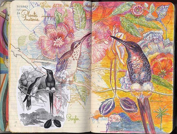 . sketchbooks
