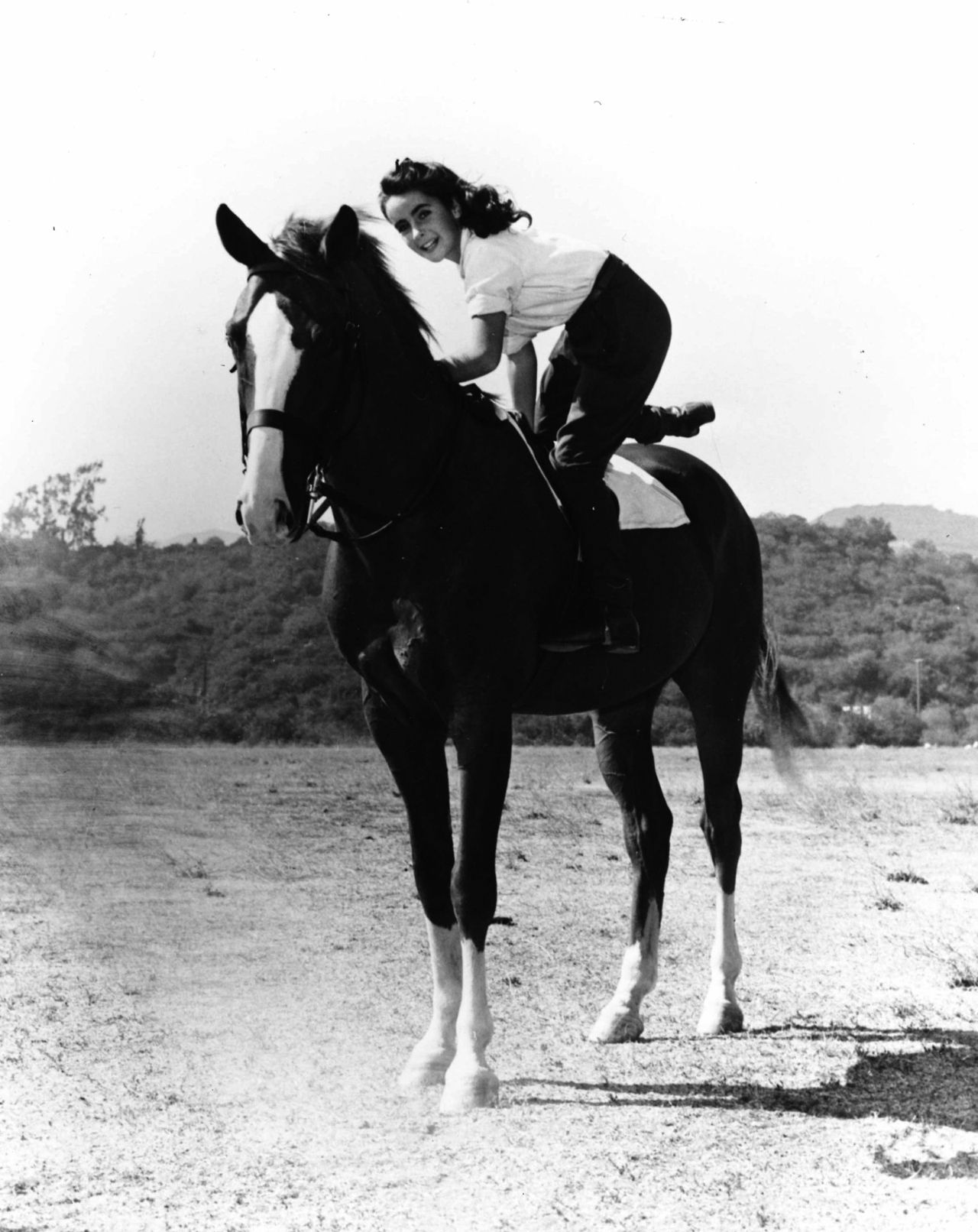 Elizabeth Taylor Horses Horse Girl Elizabeth Taylor