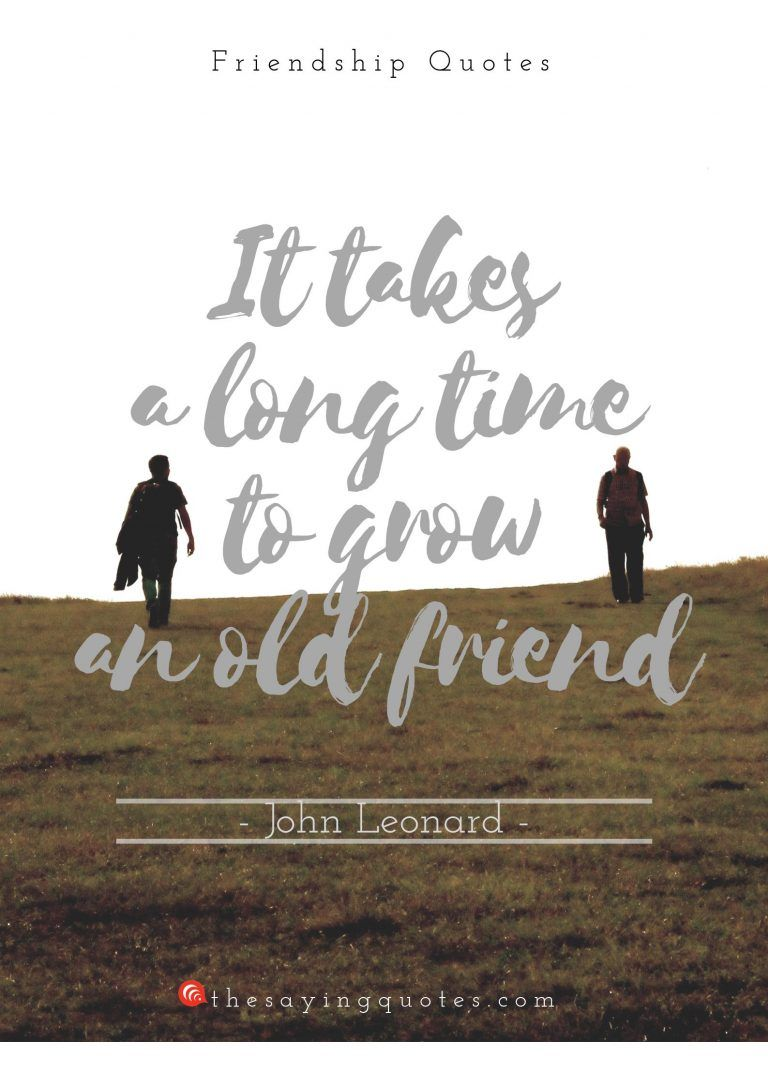 150 Best Friendship Quotes With Beautiful Images The Saying Quotes Old Friend Quotes Friendship Quotes Funny Friendship Quotes