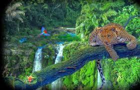 paisajes hermosos - Buscar con Google