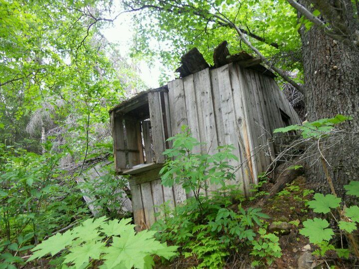 Old shack in the woods. Turnagain pass, Alaska
