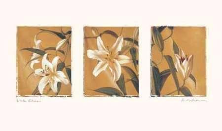 Cuadro White lilies