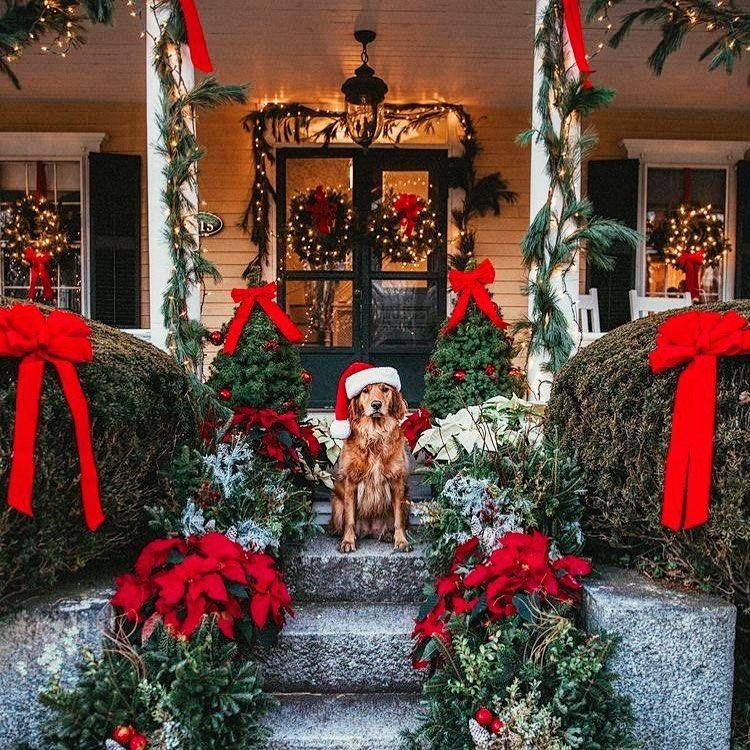 "photo me on Instagram: ""#christmaslights #christmas_all_around #comingsoon#christmasinnewyork #christmasinlondon"""