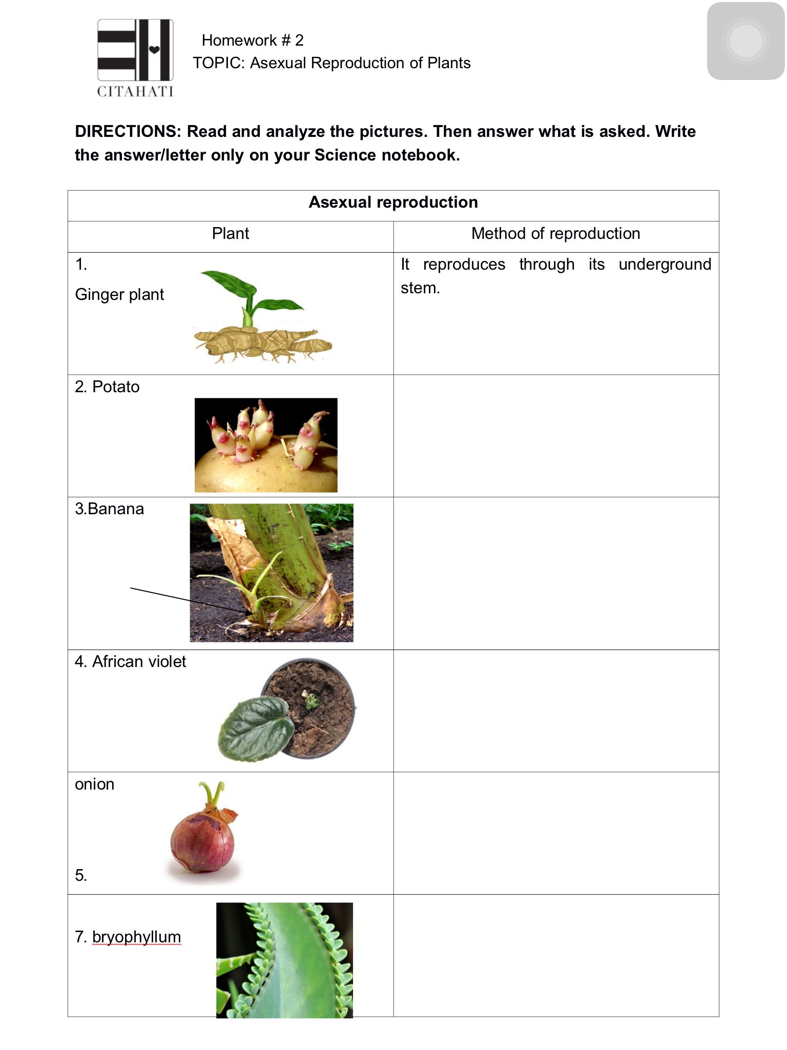 Homework 2 A Ual Reproduction In Plants Page 1 Theme 1
