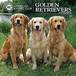 Golden Retriever Calendars 2018 Golden Retriever Retriever