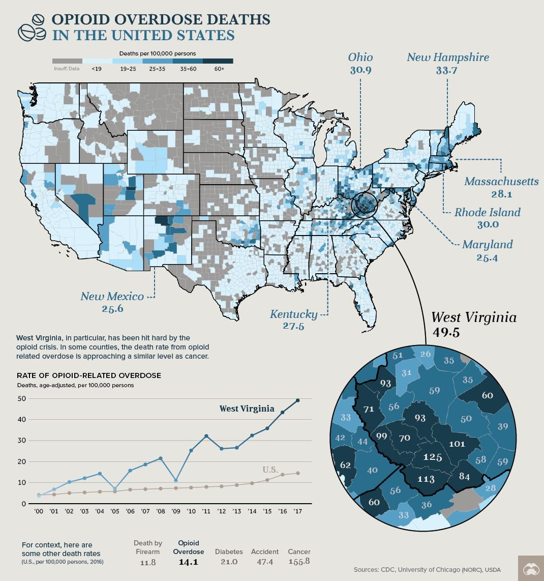 Opioid overdose deaths in the United States | United States