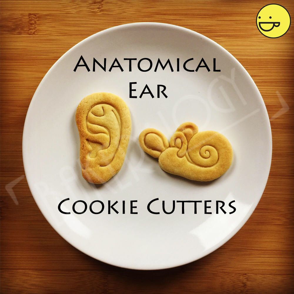 Anatomical Human Inner Ear cookie cutter | Cochlea biscuit cutter ...