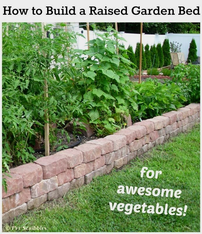 Raised Bed Gardening: What Are The Benefits? (With Images