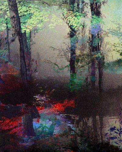 Untitled (Landscape) 20130519t Art Print by Tchmo | Society6