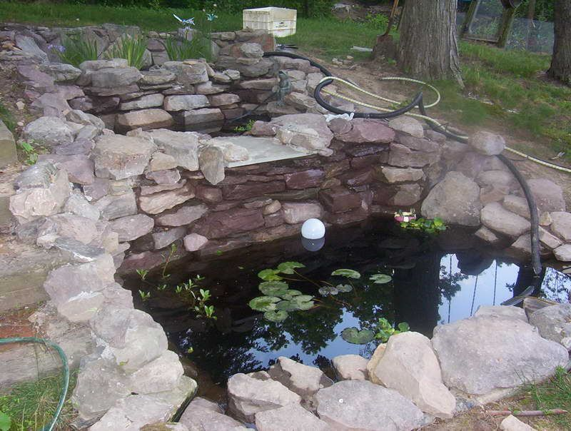 Small fish pond design with coral stone cool garden pond for Fish pond ideas
