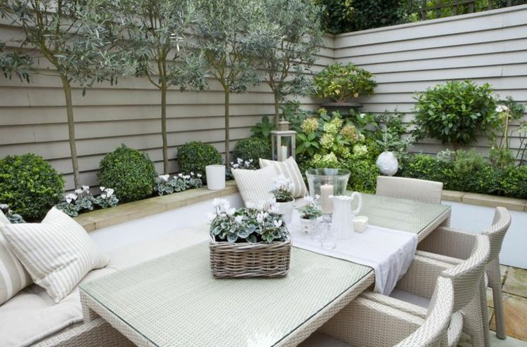 terrasse gestalten mit olivenbaum im blumenbeet. Black Bedroom Furniture Sets. Home Design Ideas