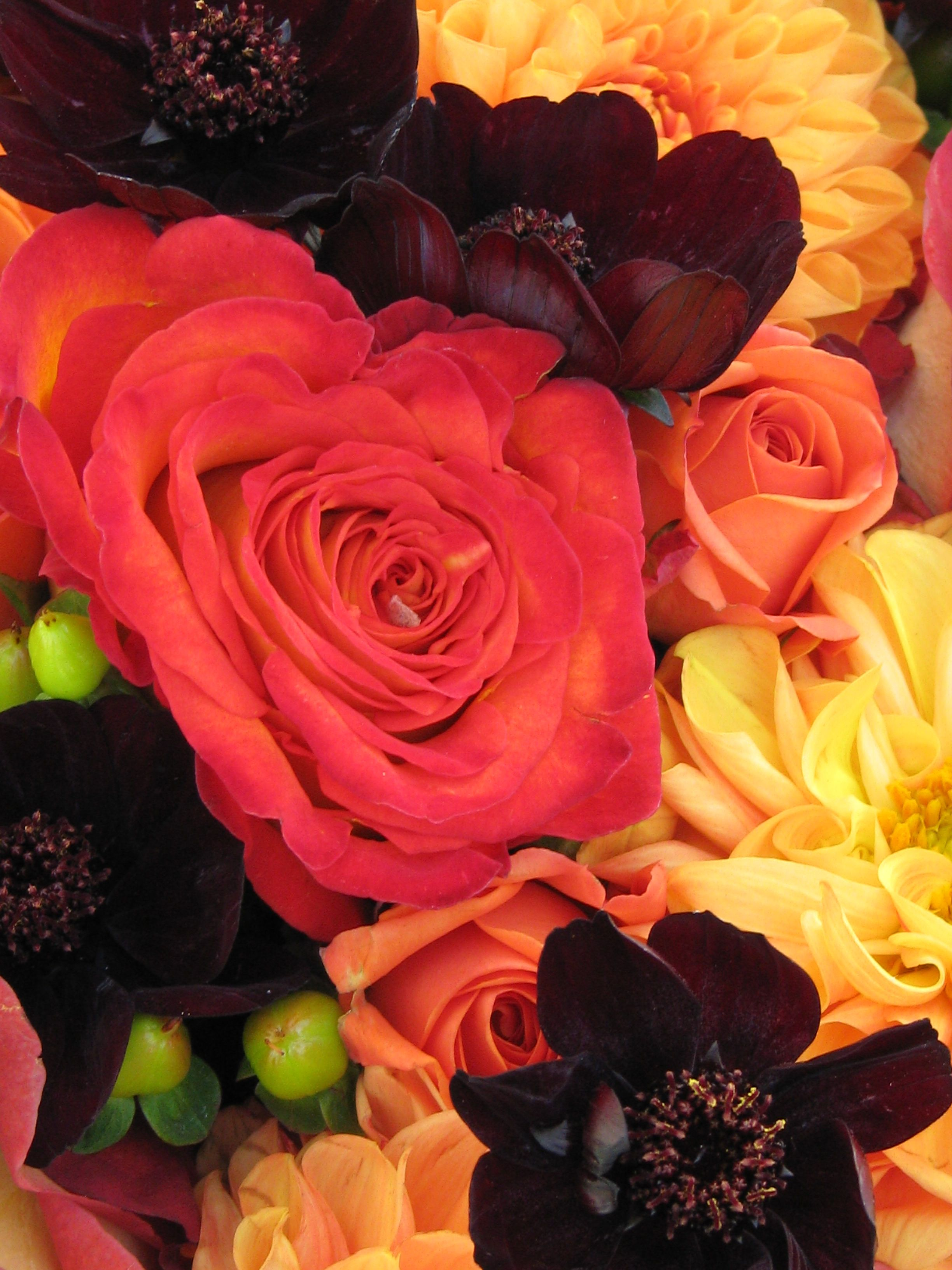 Beautiful fall flowers from countryside flower shop crystal lake beautiful fall flowers from countryside flower shop crystal lake il izmirmasajfo Image collections