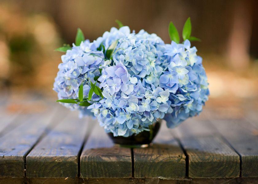 Hydrangea flower arrangements