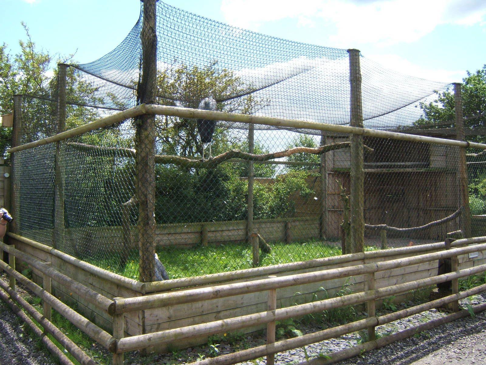 Gambar terkait   Zoo architecture, Outdoor decor, Outdoor