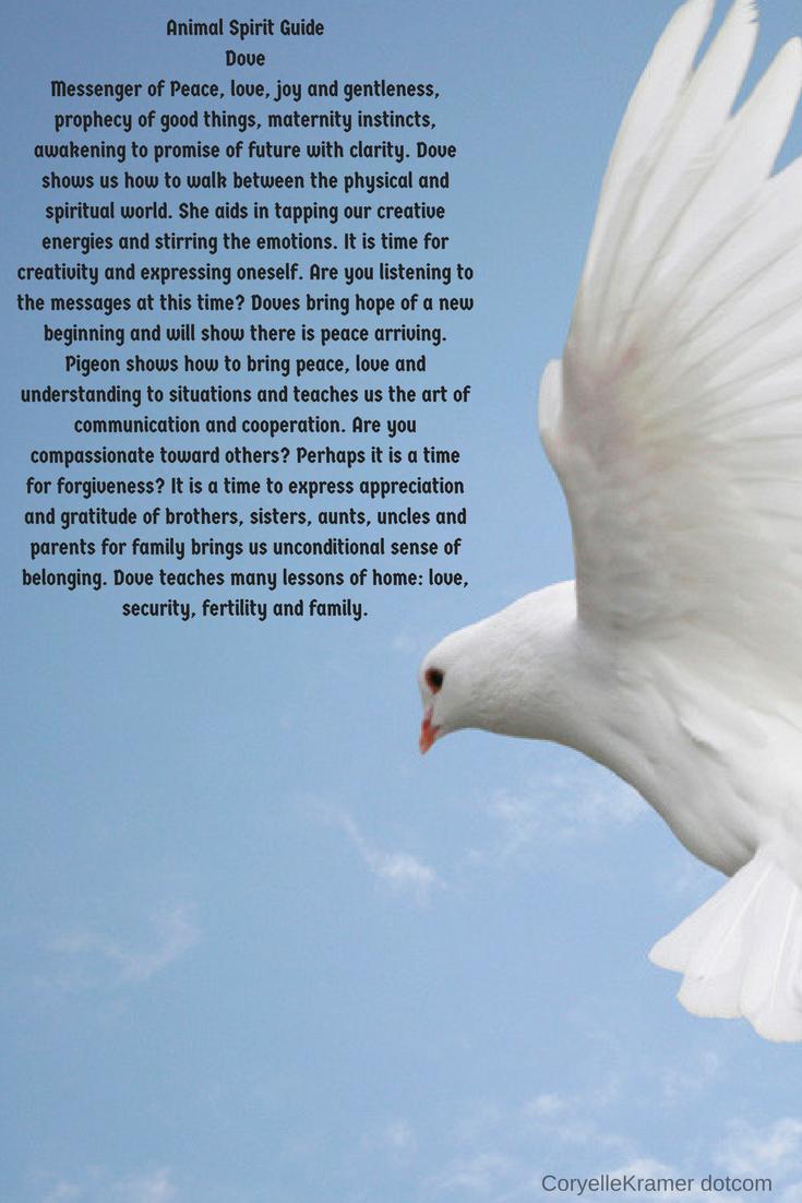 Animal Spirit Guide: Dove #animalguides #coryellekramer
