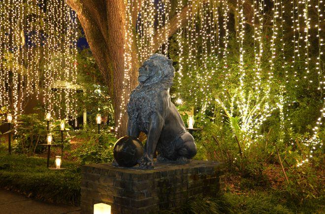 brookgreen gardens night of a thousand candles Myrtle Beach