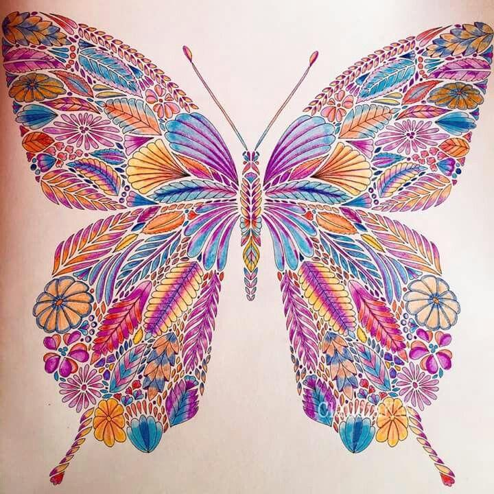 Vlinder VB Tropisch Paradijs