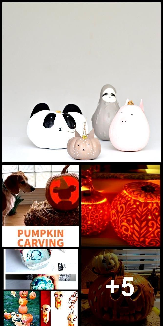 A quirky pumpkin painting idea for Halloween - Your DIY Family #pumpkinpaintingi... #pumpkinpaintingideasforkids A quirky pumpkin painting idea for Halloween - Your DIY Family #pumpkinpaintingi...,  #DIY #family #Halloween #idea #painting #Pumpkin #pumpkinpaintingi #quirky #paintedpumpkinideas A quirky pumpkin painting idea for Halloween - Your DIY Family #pumpkinpaintingi... #pumpkinpaintingideasforkids A quirky pumpkin painting idea for Halloween - Your DIY Family #pumpkinpaintingi...,  #DIY # #pumpkinpaintingideascreative