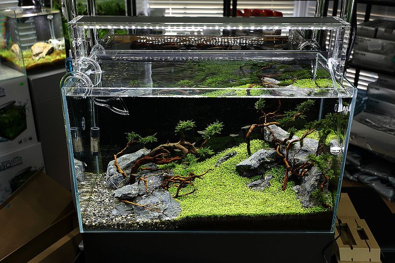 Ada Aquasky 601 Led Light Aquascape Aquarium Fresh Water Fish Tank Marine Fish Tanks