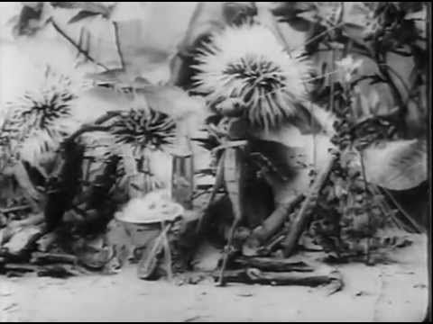 Image result for the ant and the grasshopper 1911