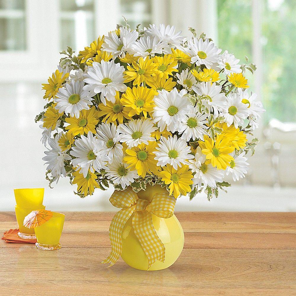 Telefloras Upsy Daisy Vase Arrangement Pinterest
