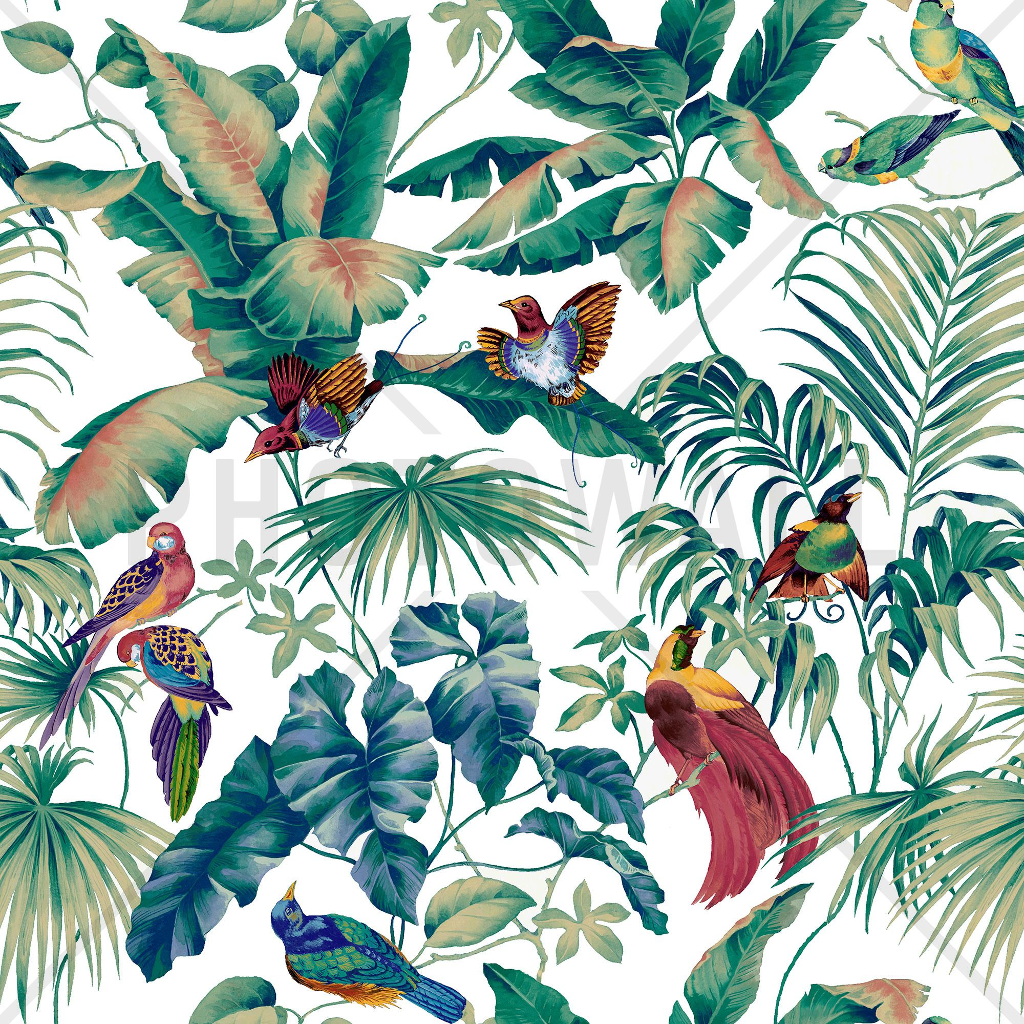 jungle canopy multi mural de pared y papel tapiz