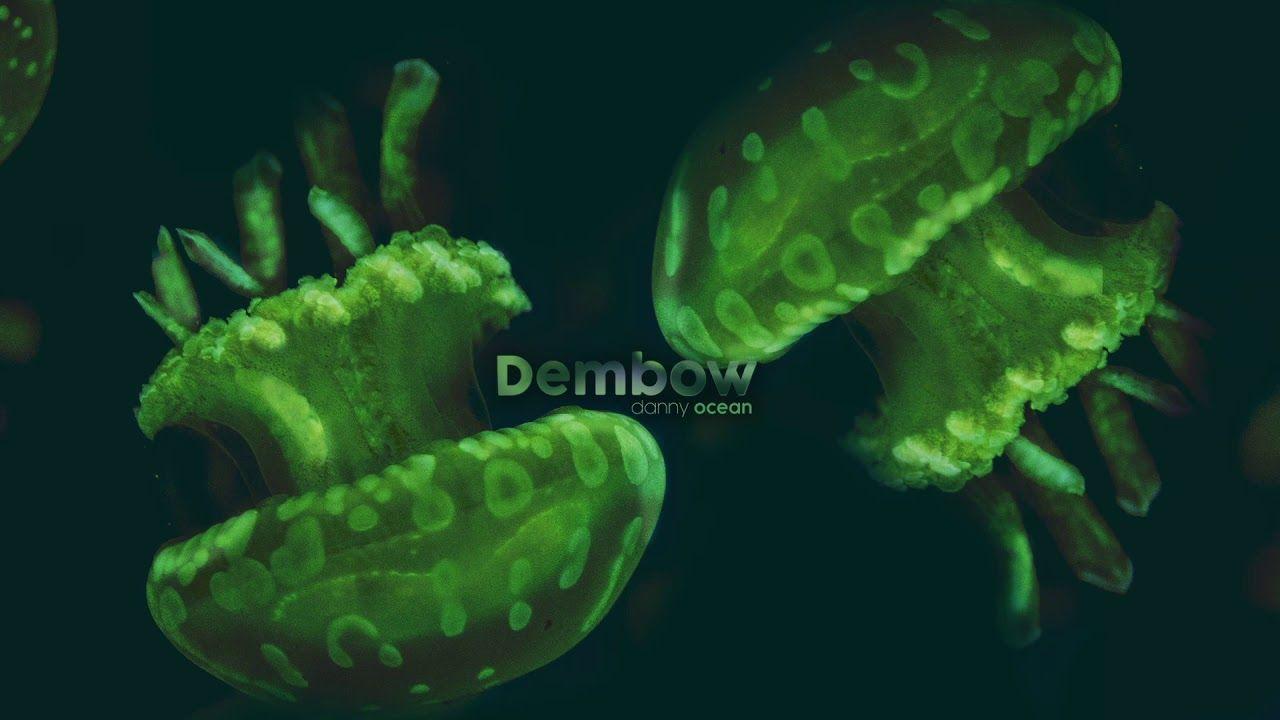 Danny Ocean Dembow (Official Audio) Ocean, Free music