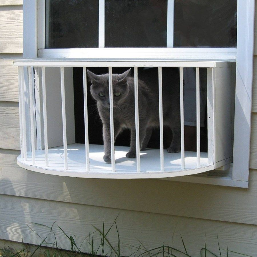 Cat solarium cat window box cat perch cat window door