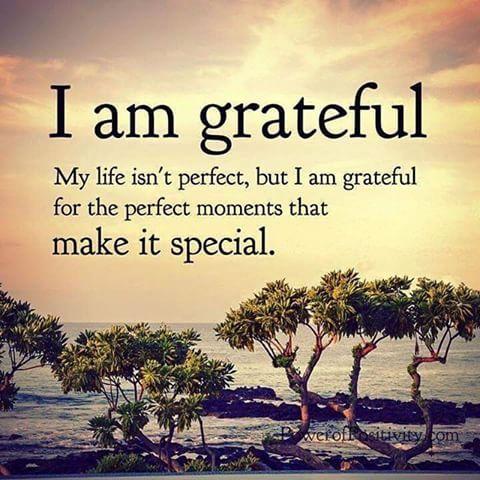 9a701ce676f4613d727f3976c67a080b image result for grateful meme quotes pinterest grateful