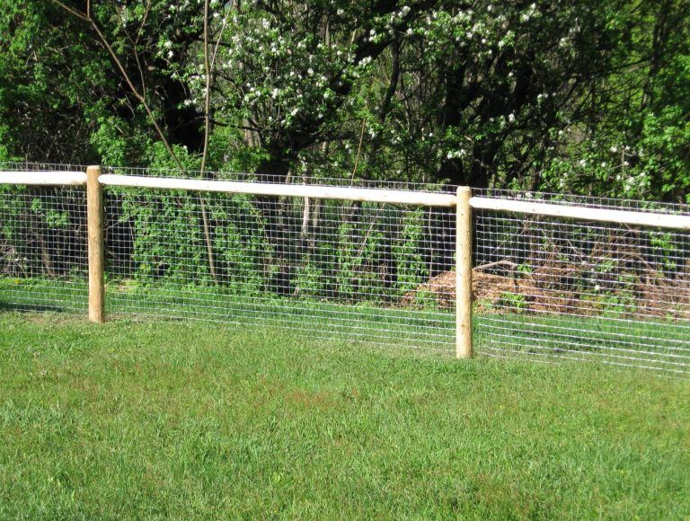 Backyard Fence Ideas For Dogs