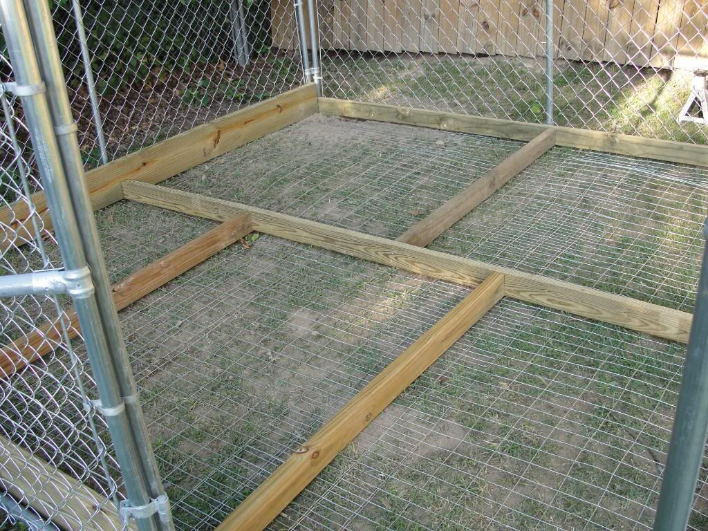 My Outdoor Set Up Page 2 Pitbulls Go Pitbull Dog Forums Dog Kennel Flooring Dog Kennel Roof Diy Dog Kennel
