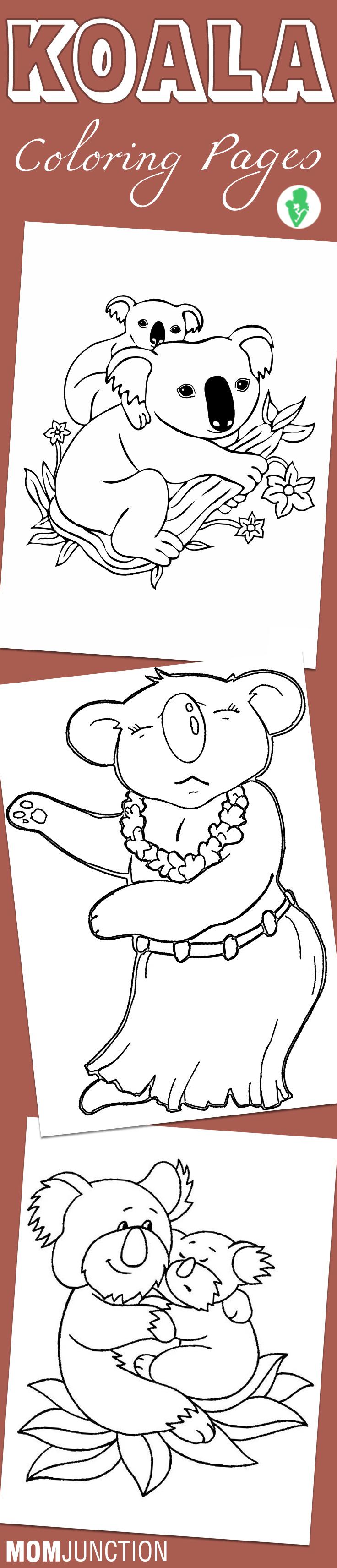 Koala Coloring Pages Free Printables
