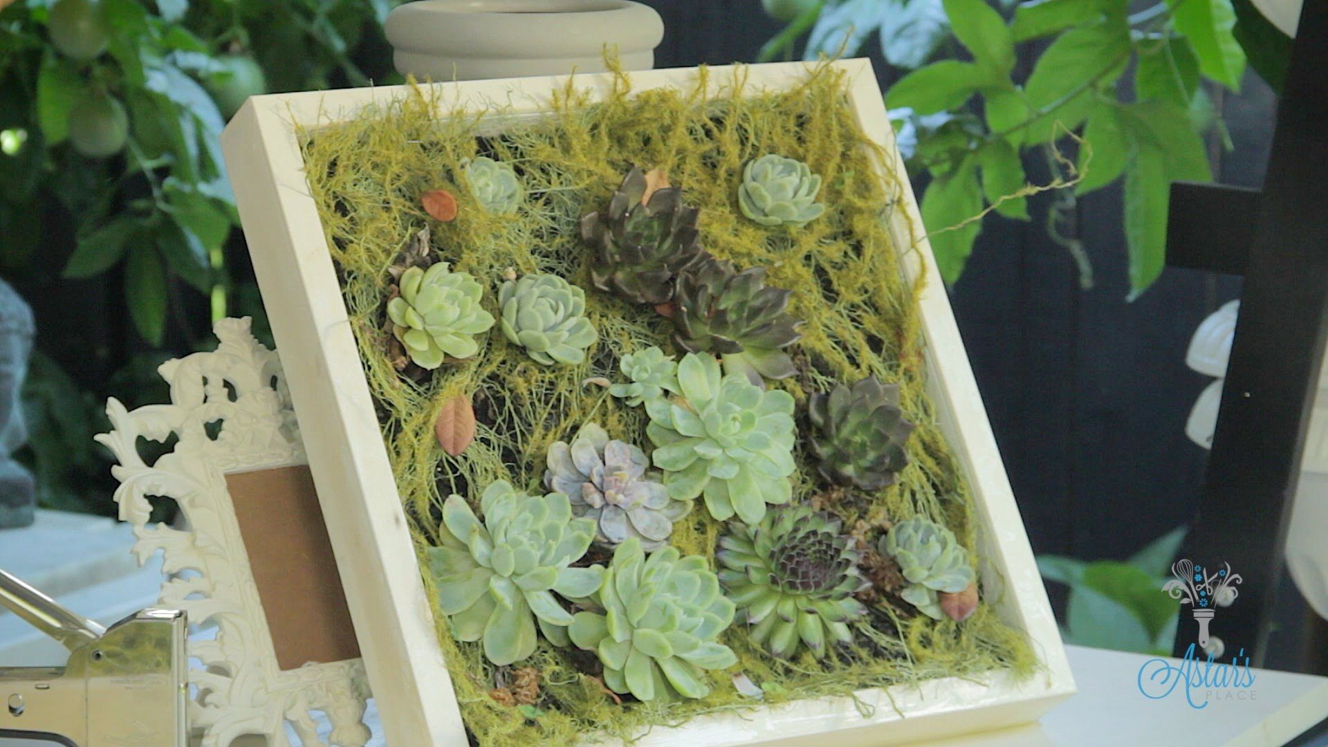 Succulent Hanging Wall Designs Floristry Tutorial Faux
