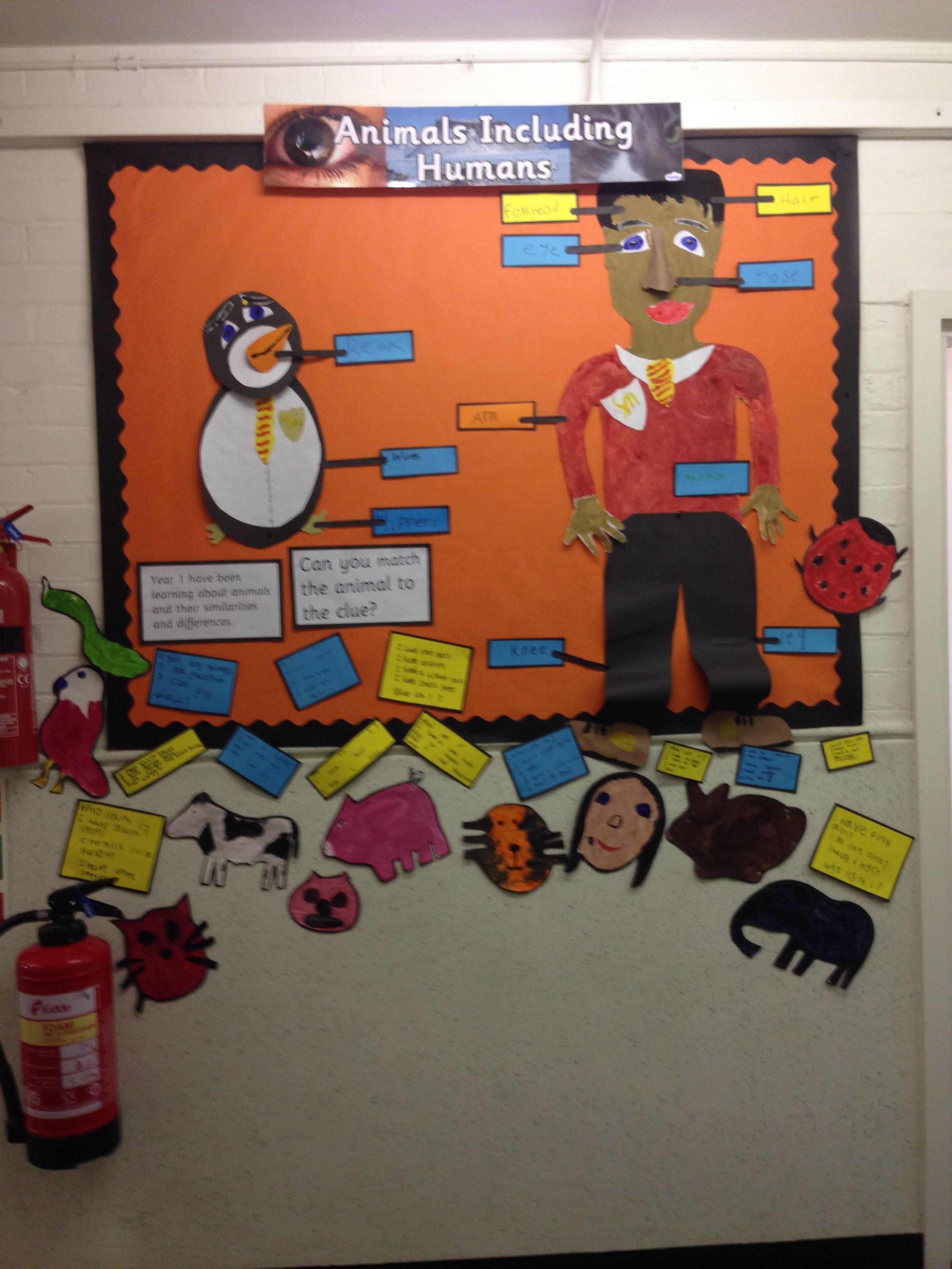Science Animals Including Humans Class 1