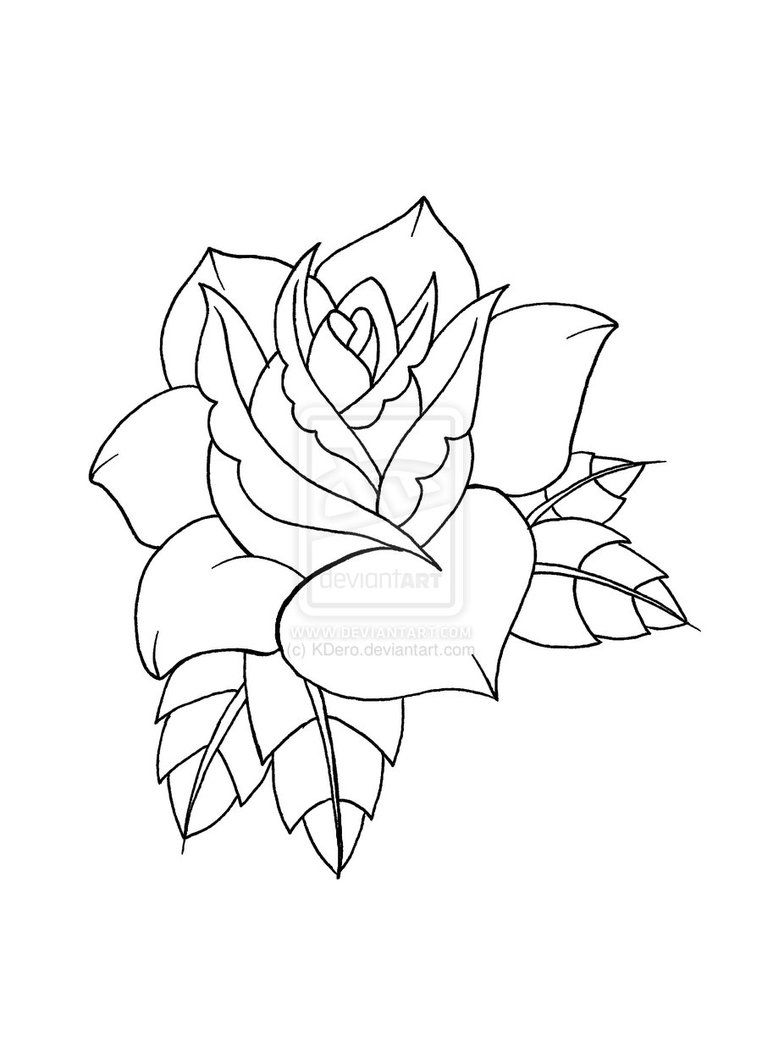 Traditional Rose Outline | www.imgkid.com - The Image Kid ...