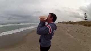 Feast of Trumpets  (Yom Teruah or Rosh Hashanah) - YouTube