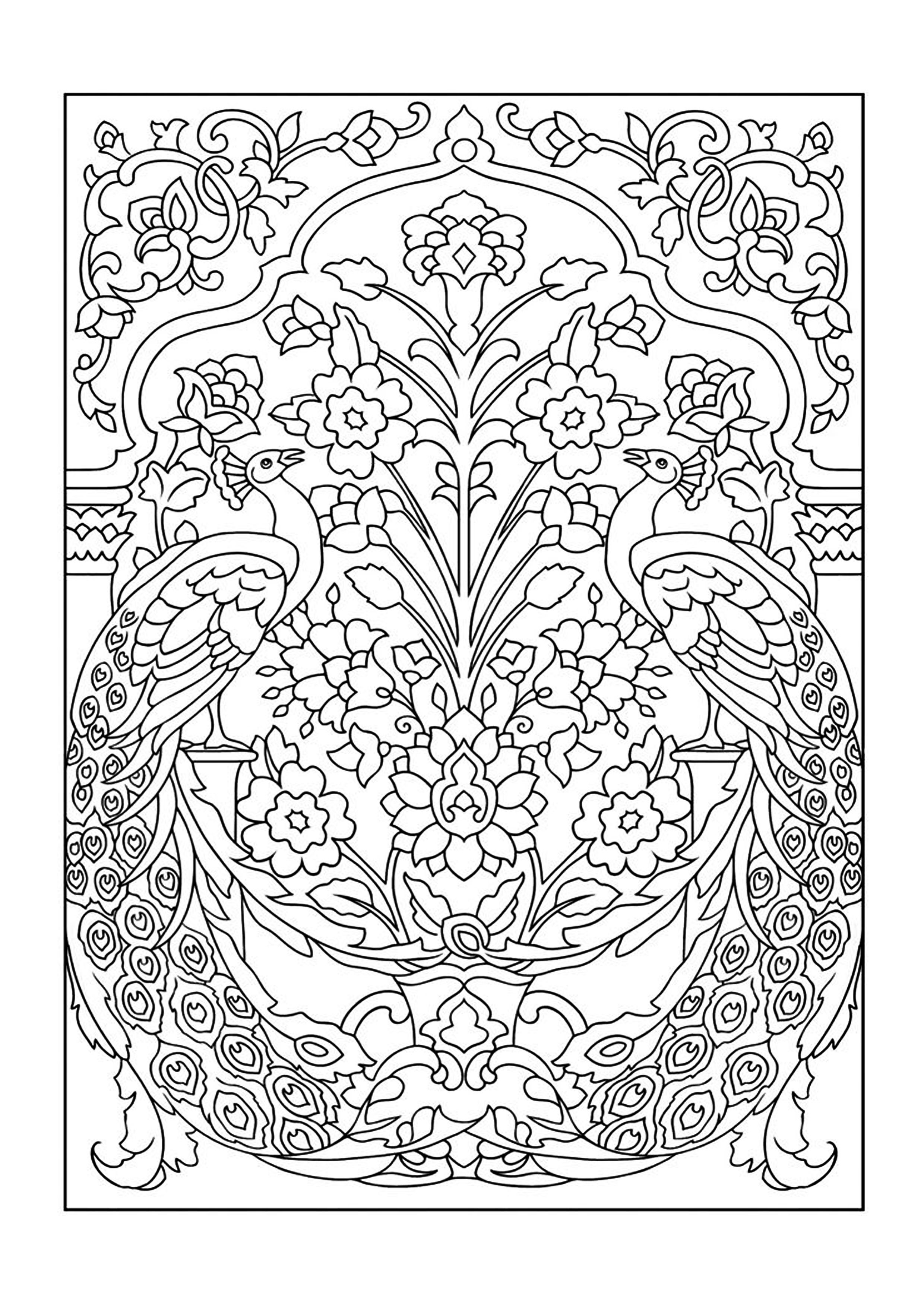 Colouring Books - FREE printable A4 size - Pavo Real // Imagenes ...