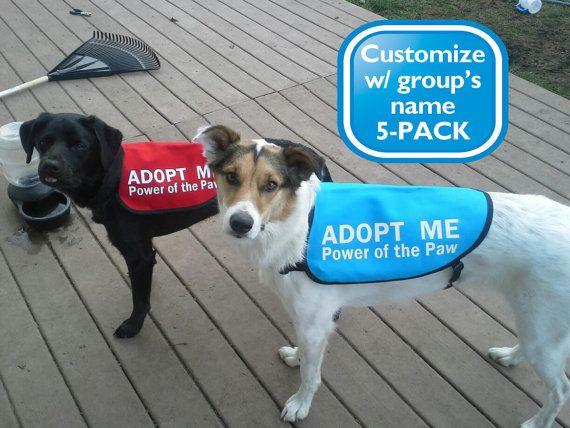 5 Pack Adopt Me Dog Jackets Vests With Group Name Or Website Dog