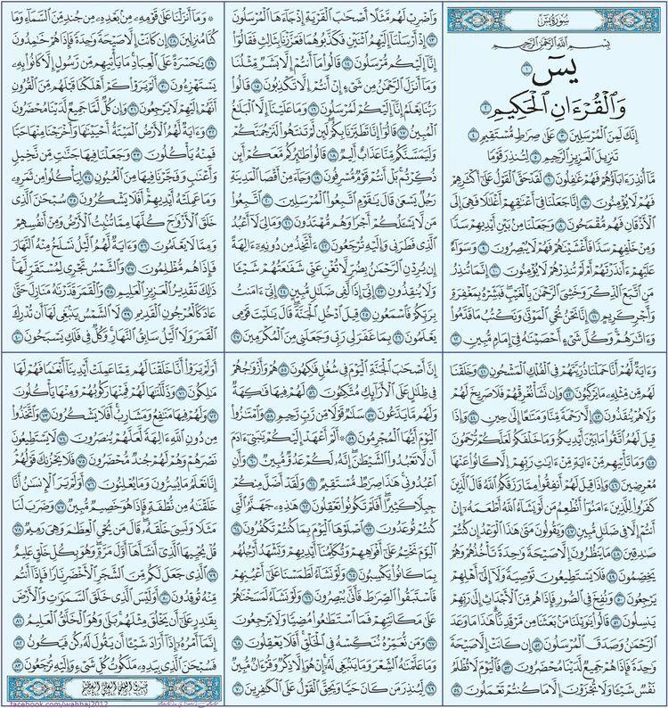 سورة يس Quran Book Quran Surah Holy Quran Book