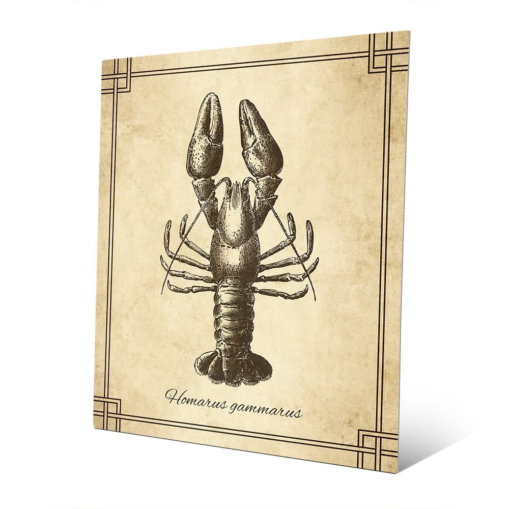Amazing Lobster Wall Decor Contemporary - The Wall Art Decorations ...