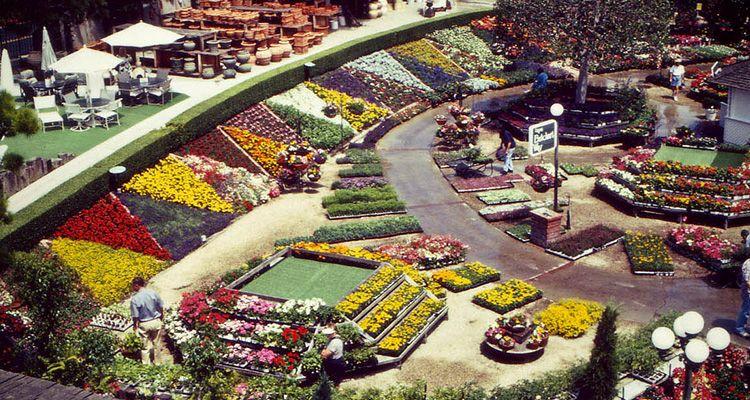 History Organic gardening, Rogers gardens, Gardening
