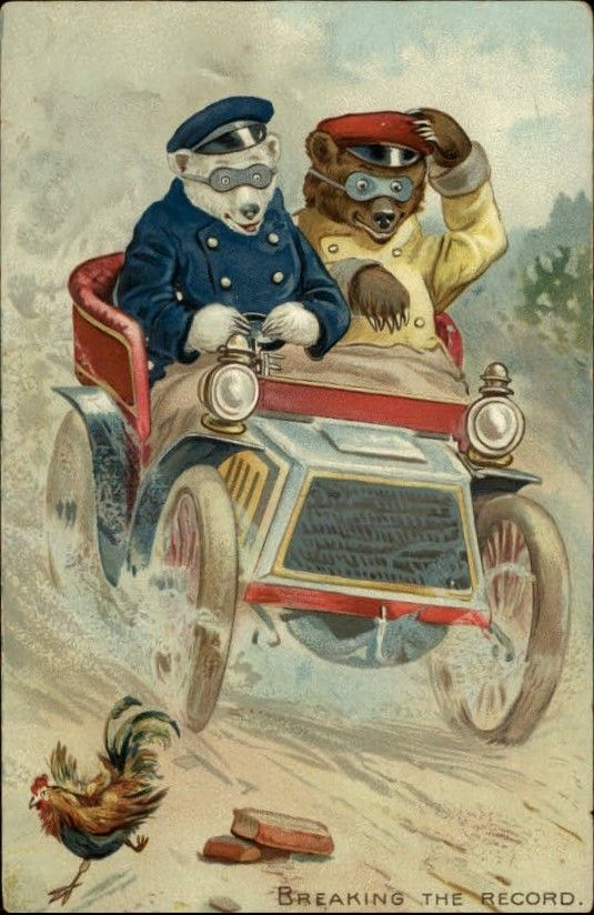 Tuck Little Bears 118 Driving Car 'Breaking The Record' c1910 Fantasy Postcard | eBay