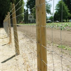 Farmgard 47 In X 330 Ft Field Fence With Galvanized Steel Class