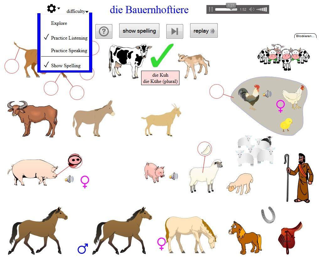 Viele Themen - Vokabeln Deutsch - sehen, hören und lesen - mit Artikel und Plural
