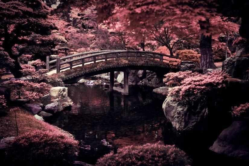 Free Download Japan Wallpaper 2560x1600 Full Hd Imperial Gardens